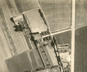 Madonnina 1925